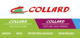 collard